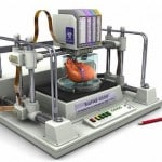 5 More Exciting 3D Bioprinting Companies