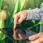 9 Agriculture Technology Startups to Keep You Fed