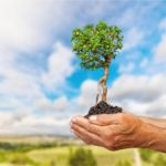 Impact Investing – A Quick Definition and How to Invest