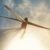 TPI Composites – A Wind Energy Stock